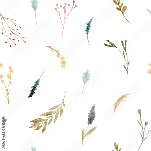 Türaufkleber Künstlich Seamless pattern of watercolor dried flowers, isolated on white background.