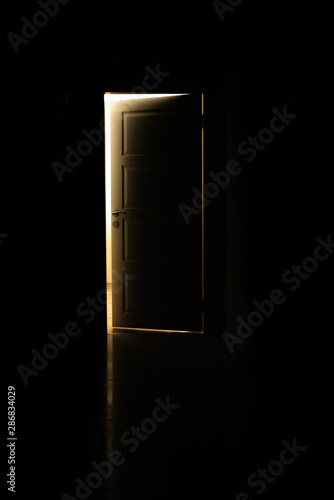 door and light in the dark Canvas Print