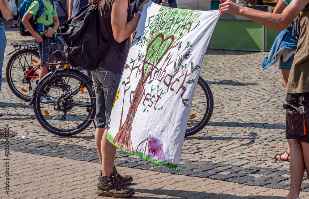 Fototapety, obrazy: fridays for future  Demonstration in Deutschland
