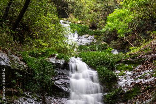 Aluminium Prints Forest river Taido waterfall in Okayama city,Japan