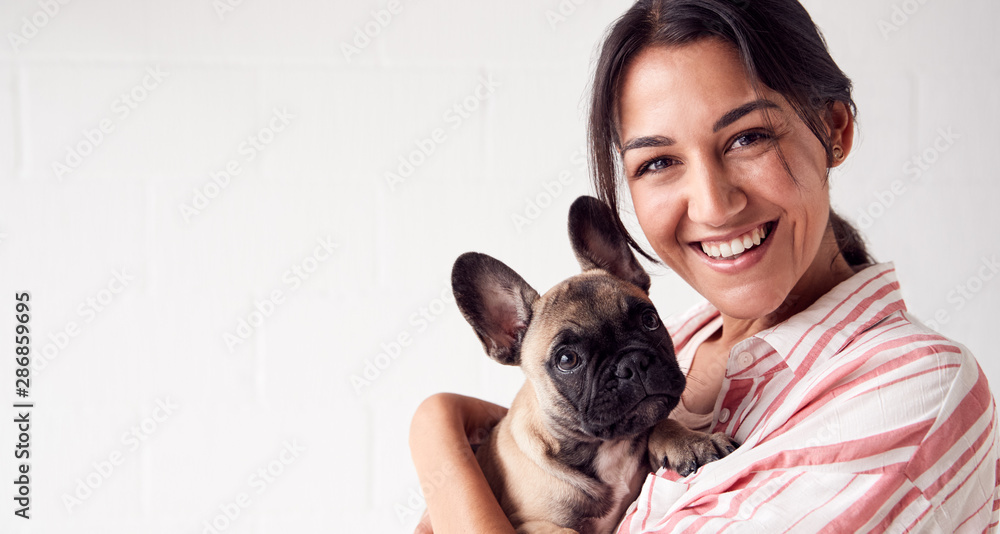 Fototapety, obrazy: Studio Portrait Of Smiling Young Woman Holding Affectionate Pet French Bulldog Puppy