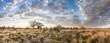 canvas print picture - Kalahari landscape at dawn