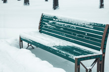 Winter Season, A Bench In The ...
