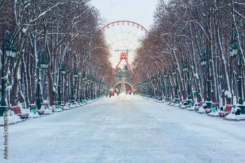 Ferris wheel in an amusement park, winter, season, evening Canvas Print