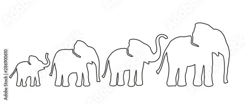 Fotografía Set of Different Elephant. Lines strength Customizable. Vector