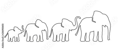 Cuadros en Lienzo  Set of Different Elephant. Lines strength Customizable. Vector