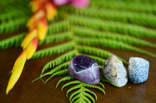 Banded Amethyst, Tumbled Ocean Jasper, And Tree Agate. Adorable Detailed Miniature Stones On Top Of A Wooden Desk With Ferns And Foliage. Natural Lighting, Macro Photography Of Healing Crystals