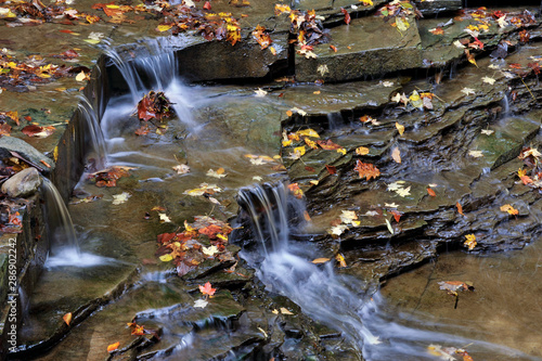 Obraz na plátně Buttermilk Stream in Autumn
