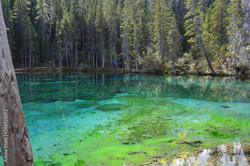 Fototapety, obrazy: Grassi Lakes - Beautiful Green Water in Rocky Mountains