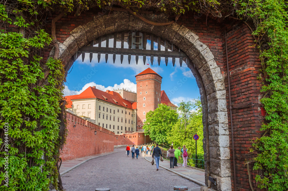Obraz Beautiful Wawel castle in Krakow Poland. fototapeta, plakat