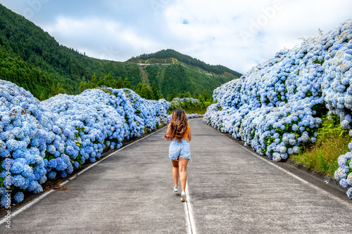 Montage in der Fensternische Hortensie Azores, Young woman in the middle of road with white and blue hydrangea at the roadside at Sete Cidade (Seven Cities), São Miguel, Azores - Portugal