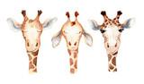 Cute giraffe cartoon watercolor illustration animal set