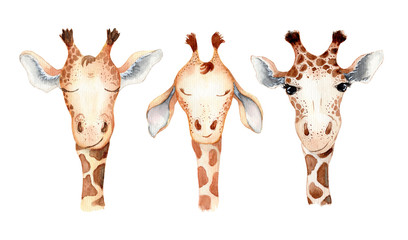 Cute giraffe cartoon watercolor illustration animal set