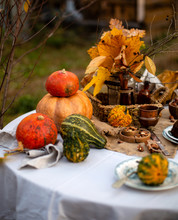 Beautiful Outdoor Still Life In Country Garden With Assorted Pumpkins On Round Table