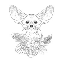 Fennec With Flowers Hand Drawn...