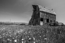 Abandoned Farm House Black And...