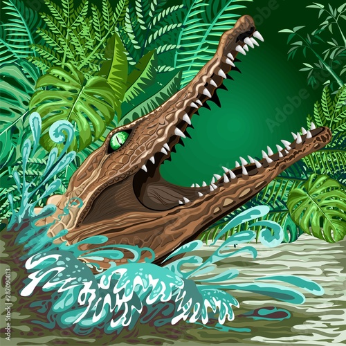 Aluminium Prints Draw Crocodile Alligator Attack coming out from the Rainforest River Vector illustration
