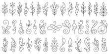 Floral Branch Ornamebt Simple Line Icon Vector Set