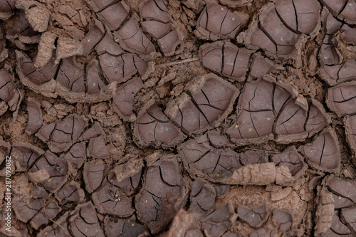 The earth is cracked due to a drought. Pieces of land divided by cracks. Textured abstract background for wallpaper.