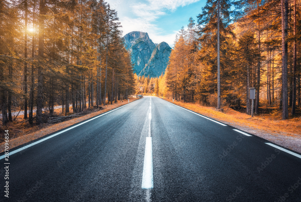 Fototapety, obrazy: Road in autumn forest at sunset in Italy. Beautiful mountain roadway, trees with orange foliage and sunlight. Landscape with empty asphalt road through woodland, blue sky, high rocks in fall. Travel