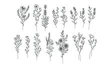 Set Of Flower Lineart For Wedd...