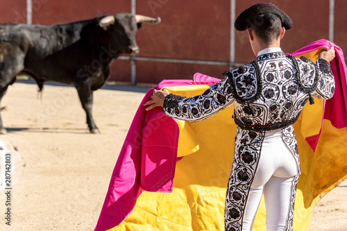 Photo bullfighter seen from behind bullfighting a bull in the Plaza of Spain