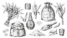 Hand Drawn Sugarcane And Rum. ...