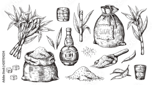Hand drawn sugarcane and rum Fototapet