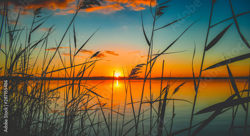 Acrylic Prints Landscapes river sunset