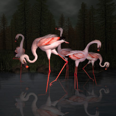 Obraz na Szkle Do sypialni The concept of friendship portrayed by a group of flamingos in a dark pond