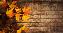 Autumn Leaves On Wooden Background With Copy Space