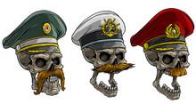 Cartoon Detailed Realistic Col...