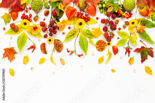 Foto auf Leinwand Texturen Autumn composition made of flowers,leaves, berries on white background. Autumn concept for Thanksgiving day or for other holidays. Flat lay.