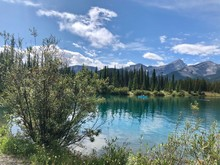 """Scenic View Of The """"Forget Me Not Pond"""" Near Calgary, In Alberta, Canada."""