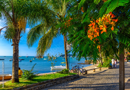 Seafront with palms in Buzios, Rio de Janeiro. Brazil Canvas Print