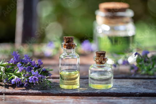 Obraz na plátně  Bottles of essential oil with fresh blooming hyssop