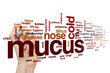 canvas print picture - Mucus word cloud