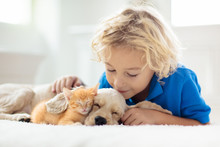Child, Dog And Cat. Kids Play With Puppy, Kitten.
