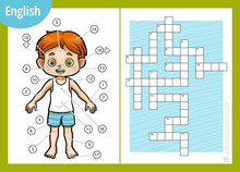 Vector Crossword In English, Education Game For Children About The Human Body. My Body Parts For A Boy