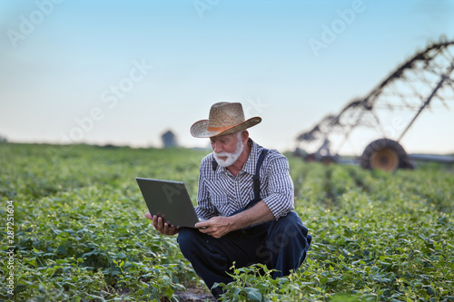 Poster Olive Farmer with laptop in front of irrigation system in field