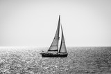 Alone yacht sailing, backlight, black and white - 287255058