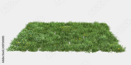 Poster Blanc Grass isolated. Image useful for banners, posters or photo maipulations. 3d rendering.