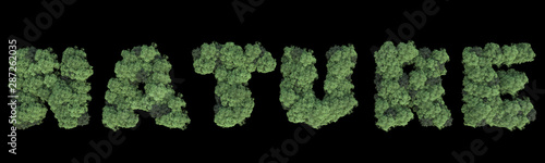 Forest word made with trees. 3d rendering. - 287262035