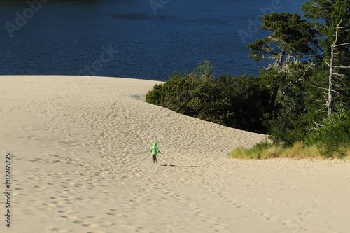 Платно Jessie M. Honeyman Memorial State Park Oregon Dunes