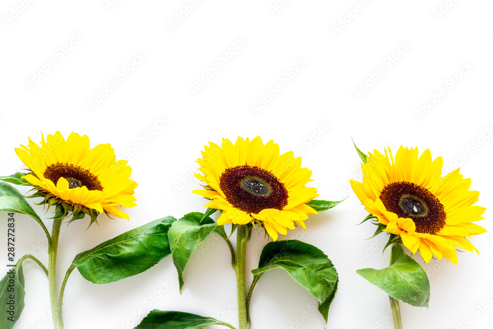 Bouquet of sunflowers on white background top view mockup