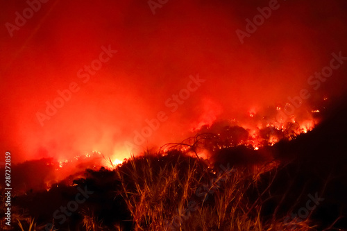 Rouge traffic Amazon forest fire disater problem.Fire burns trees in the mountain at night.