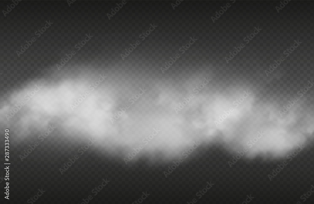 Fototapeta Smoke effect. Vector realistic smoke or for isolated on transparent background. Illustration cloud smoke transparent, steam cigarette or cigar