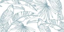 Parrot Card Vector Line Art. E...