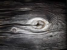 Eye Of The Timber - An Eye Sha...