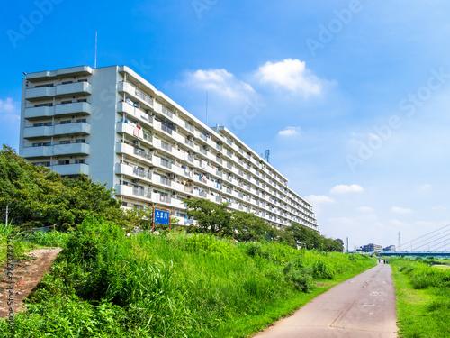 多摩川サイクリングコースと集合住宅